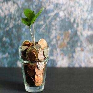 چگونه با سرمایه کم پولدار شویم