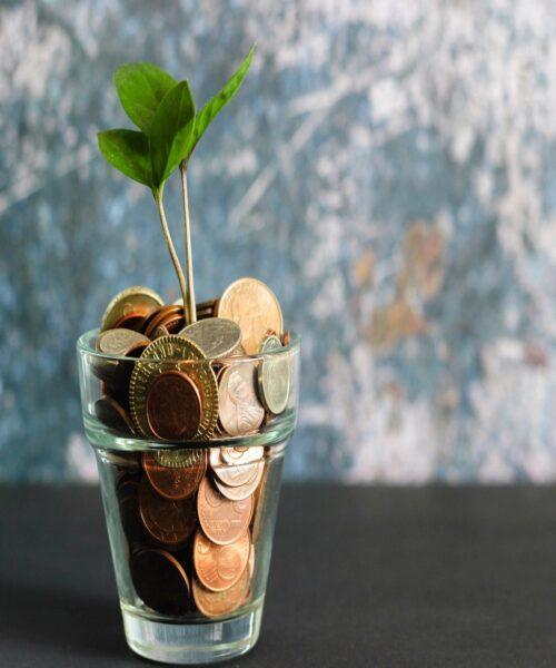 چطوری با سرمایه کم پولدار بشیم